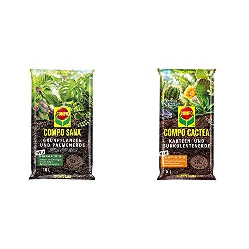 COMPO SANA Grünpflanzen- und Palmenerde mit 12 Wochen Dünger, 10 Liter & CACTEA Kakteen- und Sukkulentenerde mit 8 Wochen Dünger für alle Kakteenarten und dickblättrige Pflanzen, 5 Liter