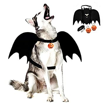 Best dragon dog costumes Reviews