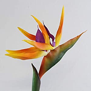 Dserw Artificial Flower Bird of Paradise,Artificial Flower Bird of Paradise Fake Plant Silk Strelitzia Reginae Home Decor – Orange