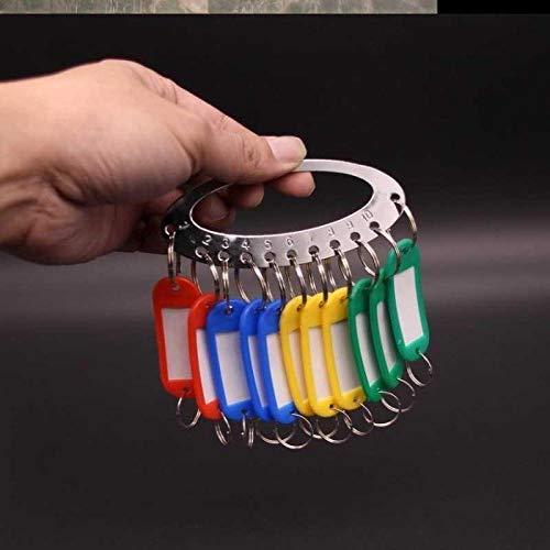 Handgehaltener Schlüsseletikett-Aufkleberanhänger, abnehmbarer Schlüsselverwaltungs-Schnallenanhänger, kleines Schlüsselschild-11-Bit-Festplatte + 11 Karten 2nt4