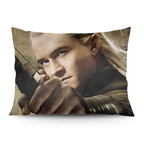 xdbgdfhdhdjdj Fundas de almohada adecuadas para el hogar, sofá, cama, 50,8 x 66 cm (H-u-o-b-i-t-e-r-e-n 5)