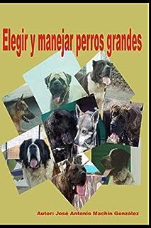 Elegir y manejar perros grandes