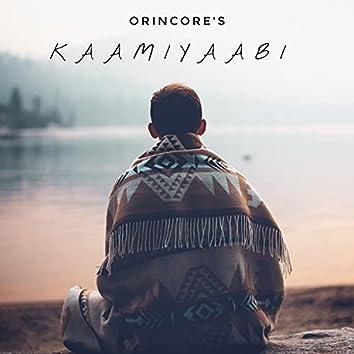 Kaamiyaabi
