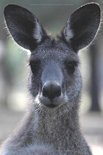 - Känguru Kostüm Australien