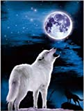 TripStan 3D Home Wall Art Decor Lenticular Imagenes, Wolf Collection Holographic Flipping Images, 30,5 x 40,6 cm Animal Poster Painting, sin marco, blanco Wolf Chief