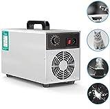 Ting El ozono Industrial Generador Desinfección Máquina Oficina for Aire ionizadores Comercial Inicio Barco y el Coche 2 Horas con Temporizador 3 G/h Esterilizador 0610