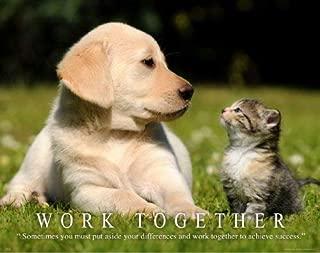 Cat Motivational Poster Art Print 11x14 Kitten Puppy Dog Labadore Toys Collar Wall Decor Pictures