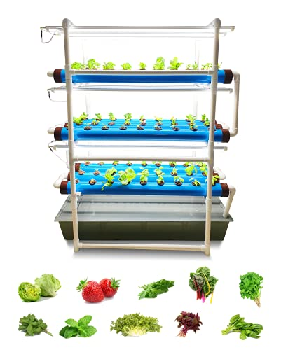 Pindfresh Hydroponics Kit for Home or Office - The Tashi Home Indoor NFT Hydroponic System with Grow Lights for Growing 81 Leafy Greens - All Inclusive hydroponics kit from Seed to Harvest.