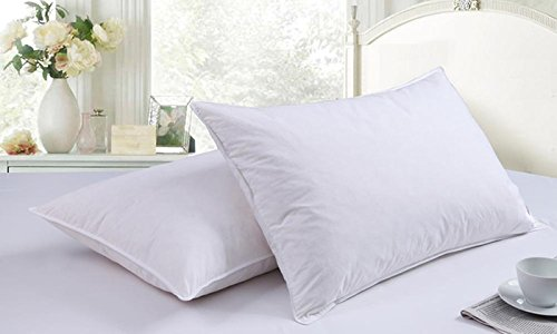 Adam 2 x 100% Cotton Luxury Duck Feather and Down Anti-Allergy Pillow Extra Filled Hotel Quality