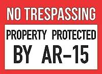ヴィンテージはがきアートの装飾、AR 15銃の権利2修正記号で保護された立ち入り禁止、面白い鉄絵ヴィンテージ金属プラーク装飾警告サインアートワークポスター