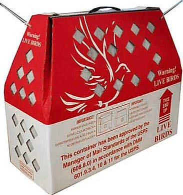 Pinnon Hatch Farms LLC Live Bird Shipping Boxes (1pk) Horizon Chickens Poultry Gamefowl (No Divider)