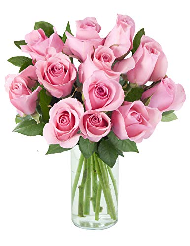 Arabella Farm Direct Bouquet of 12 Fresh Cut Pink Roses with a Free Glass Vase