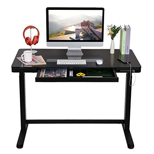 FLEXISPOT 電動式昇降デスク EG8(幅120×奥行60,ガラス天板)メモリー機能付き 組立簡単 USBポー ト付き スタンディングデスク パソコンデスク ガラステーブル (ブラック)