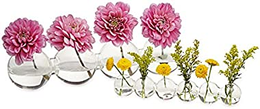 """Caterpillar, Clear Glass Bud Vase 10.25"""" Long 1"""" Wide 1.5"""" Tall for Short Flowers, Unique Low Sitting Flower Vase, Cute Flora"""