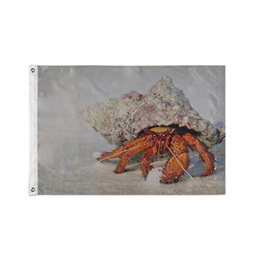 Drapeaux de cour de maison Un mignon petit crabe arc-en-ciel Drapeaux de cour de maison 24 x 36 pouces / 36 x 60 pouces Polyester durable imprimé avec deux œillets métalliques pour extérieur / intéri