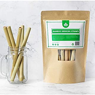 Set of 10 Reusable Bamboo Drinking Straws - Plastic Straw Alternative - Straw Cleaner & Travelling Pouch Included