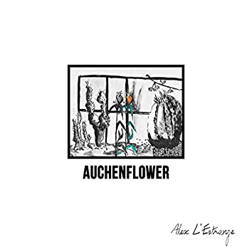 Auchenflower