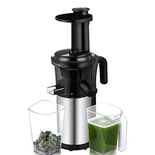 200W 40RPM Edelstahl Masticating Slow Auger Juicer Fruit and Vegetable Juice Extractor Compact Cold Press Juicer Machine