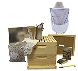 Beehive Starter Kit and Supplies