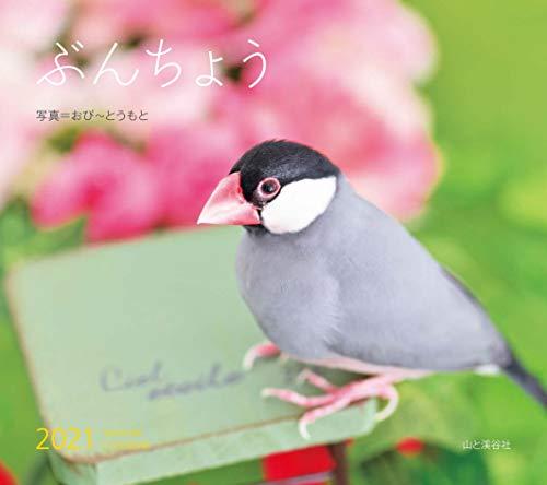 カレンダー2021 ぶんちょう (月めくり・壁掛け) (ヤマケイカレンダー2021)の詳細を見る