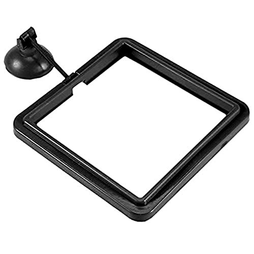 SunGrow Feeding Ring, 4x4 Inches, F…