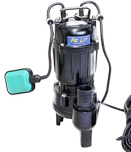 Pro-Lift-Gereedschappen Dompelpomp met vlotterschakelaar 550 W tuinpomp metalen behuizing 20000l/h waterpomp 230V bilgepomp bronpomp 20m3/h aquarium elektrische zwembadpomp 0,55 kW