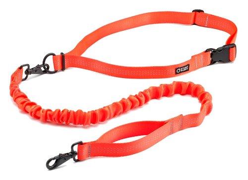 Stunt Puppy Stunt Runner Hands-Free Dog Leash, Orange
