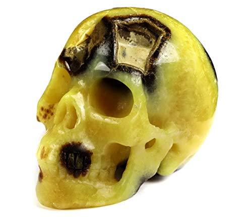 "Skullis 5.0"" Dragon Septarian Stone Crystal Skull, Hand Carved Gemstone Fine Art Sculpture, Reiki Healing Stone Statue."
