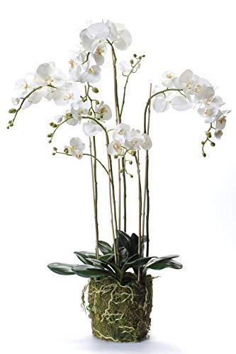 artplants.de Künstliche Orchidee Phalaenopsis Pabla im Erdballen, weiß - gelb, 130cm - Deko Orchidee - Kunstorchidee