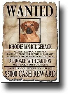 Rhodesian Ridgeback quería imán de nevera