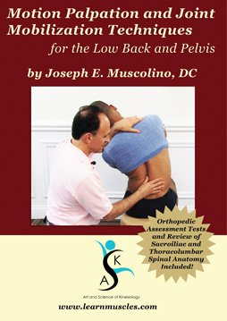 Motion Palpation Assessment and Joint Mobilization Treatment Techniques for the Low Back and Pelvis