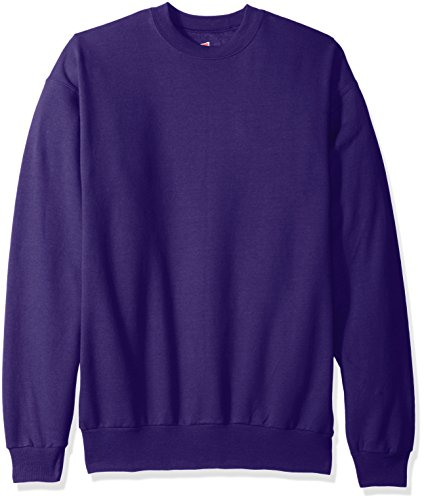 Hanes Men's EcoSmart Fleece Sweatshirt, Purple, Medium