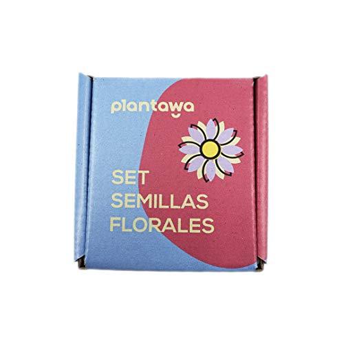 PLANTAWA Set de Semillas Flores, Semillas de Flores, 12 Variedades de Semillas de Flores para Huerto Urbano, Flores para Jardin