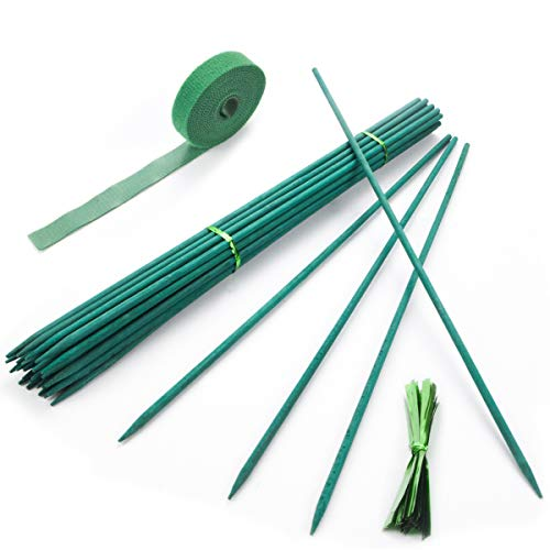 Qefuna 30Pcs Garden Stakes Green Bamboo Sticks Decorative Garden Wood Stakes for Plants, Wooden Plant Support Sticks, Small Stakes for Garden with Garden Ties and Nylon Plant Tie Strap (16 inch)