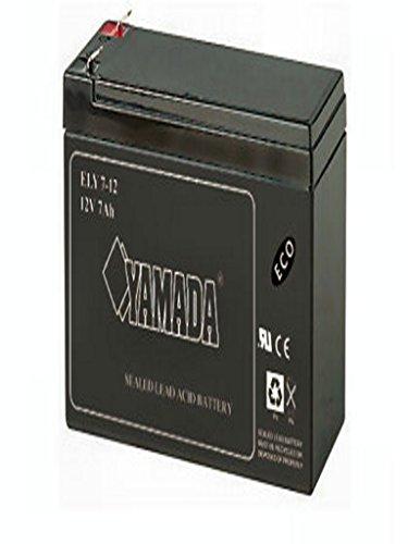 Buylloon Elettroforniture Batteria Ricaricabile al Piombo 12V 7A ELCART 304581