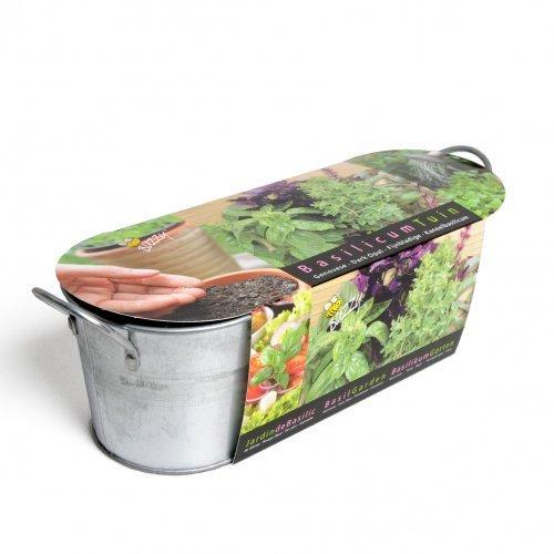 Mini-Küchengarten. Basilikum: Zink-Blumenkasten (10 cm hoch, 30 cm lang) mit Saatmischung, Pflanzenerde und Pflegeanleitung