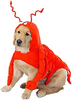 Casual Canine Lobster Paws Dog Costume, XX-Large (fits lengths up to 30