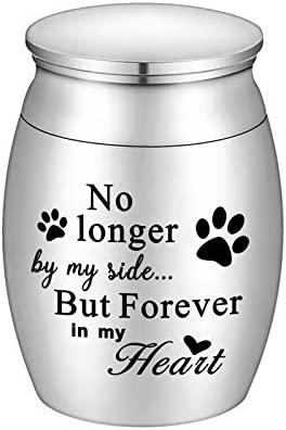 XIUDA Small Cremation Urn for Dog Ashes Mini Pet Ashes Urn Stainless Steel Ashes Keepsake No product image