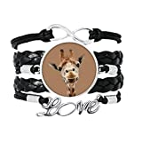OFFbb-USA Giraffe Camera Observation Action Bracelet Love Accessory Twisted Leather Knitting Rope Wristband Gift