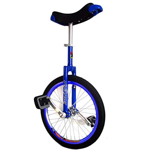 HWF Monociclo Monocicli da 24 Pollici per Adulti Bambini - Telaio in Alluminio Leggero E Resistente, Uni Cycle, Bici A...