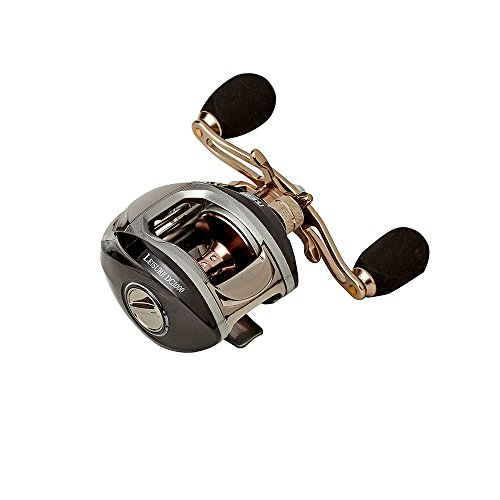 NOEBY Low Profile Baitcasting Fishing Reel with 9+1 Ball Bearing Standard Speed ,Right Left handed agnetic Brake System Saltwater Reels with Aluminum Frame Good (LEISURE DC1000R)