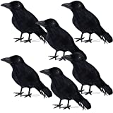 DR.DUDU Halloween Crow Decorations 6 Pack, Lifesize Handmade Artificial Black Feather Birds Prop, Fake Ravens Décor for Outdoor Indoor Party