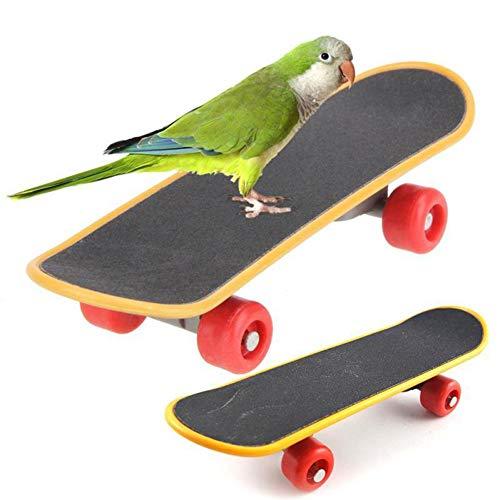 FairOnly Grappige Mini Papegaaien Skateboard Training Spelen Interactie Speelgoed