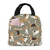 Bolsas de almuerzo para mujeres, niñas, hombres, adolescentes, niños, diseño de perro Beagle, caja de almuerzo para trabajo, escuela, viajes y picnic.