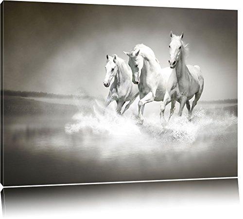 Weisse Pferde rennen im Wasser Format: 120x80 auf Leinwand, XXL riesige Bilder fertig gerahmt mit Keilrahmen, Kunstdruck auf Wandbild mit Rahmen, günstiger als Gemälde oder Ölbild, kein Poster oder Plakat