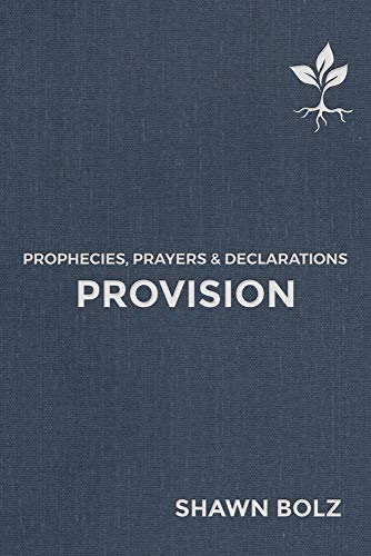 Provision: Prophecies, Prayers & Declarations (2)