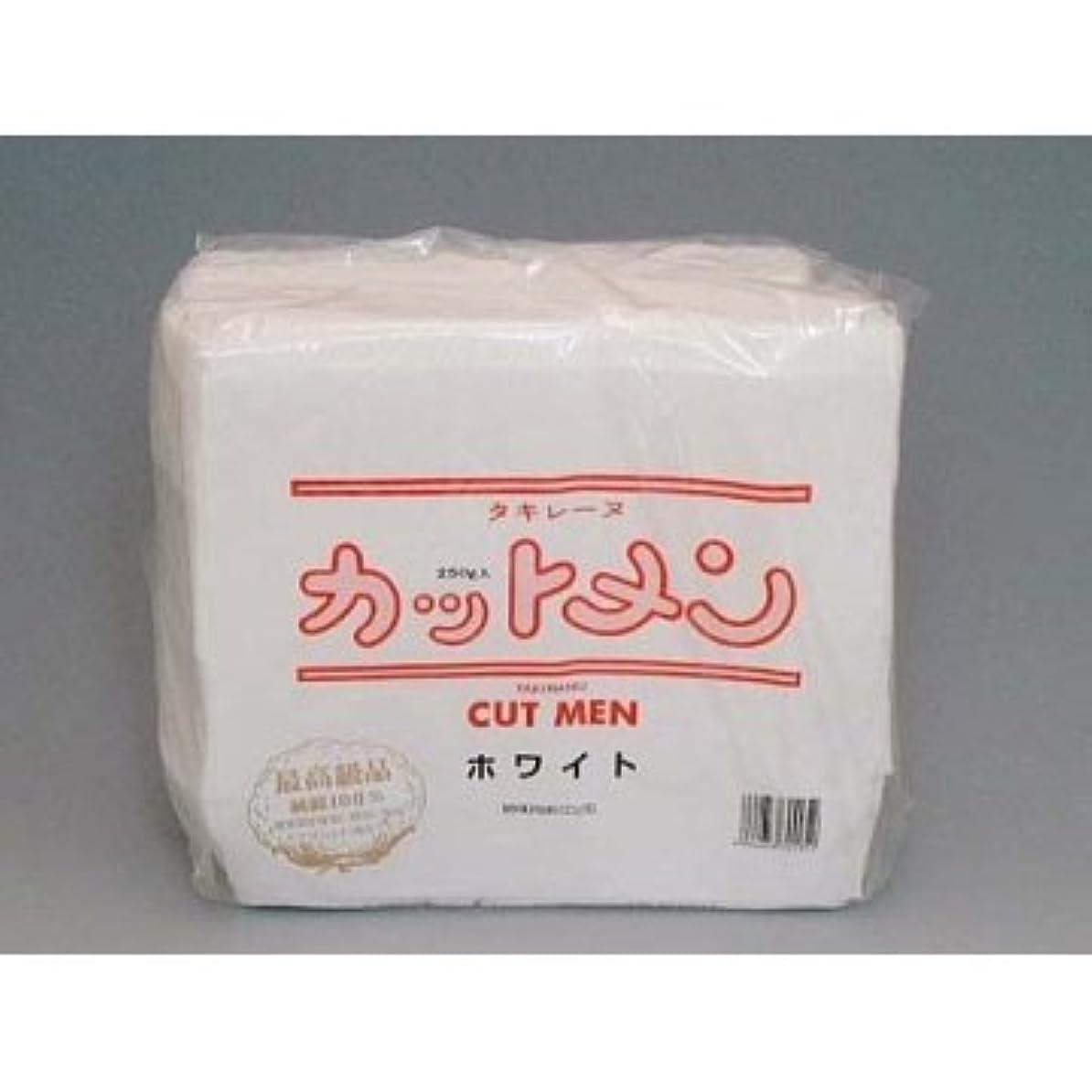 あいまい決定的耐えられない滝川 タキレーヌ カットメン ホワイト 700枚入 5×6cm 純綿100%250g