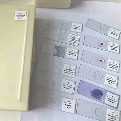 100pcs/set Medical Parasite Microscope Prepared Slides parasitology Prepared Slides
