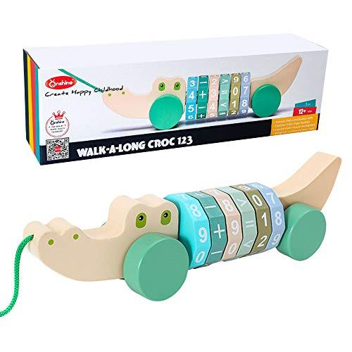 Arkmiido Juguete de Arrastre con Eje Digital para 1 año, Juguetes Bebes 1 año,Juguete Educativo para bebés y bebés, Juguete de Empuje para niños.Juguete de Madera para niños (Green)