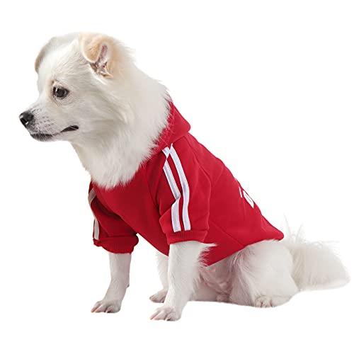 QiCheng&LYS Hundehoodie kleine Hunde Strickpullover wintermantel für kleine Hunde (Rot, L)